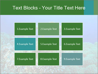 Wild Turtle PowerPoint Template - Slide 68