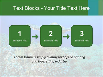 Wild Turtle PowerPoint Template - Slide 71
