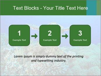Wild Turtle PowerPoint Templates - Slide 71