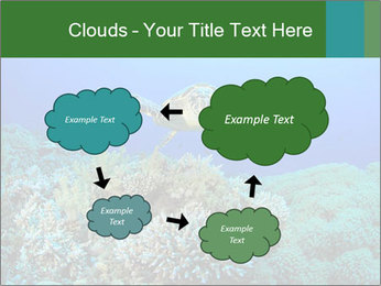 Wild Turtle PowerPoint Template - Slide 72