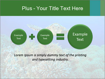 Wild Turtle PowerPoint Template - Slide 75