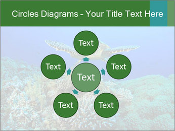 Wild Turtle PowerPoint Template - Slide 78