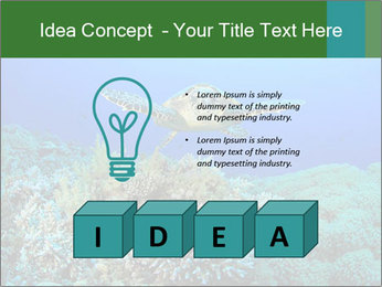 Wild Turtle PowerPoint Template - Slide 80