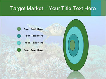 Wild Turtle PowerPoint Template - Slide 84
