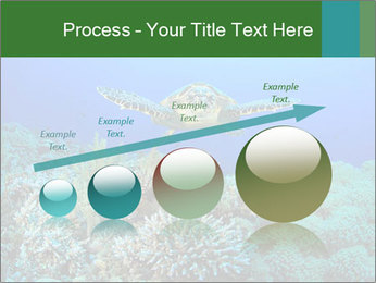 Wild Turtle PowerPoint Template - Slide 87