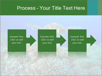 Wild Turtle PowerPoint Template - Slide 88