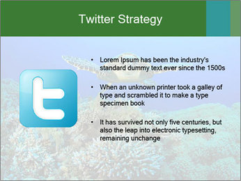 Wild Turtle PowerPoint Template - Slide 9
