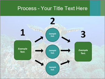 Wild Turtle PowerPoint Template - Slide 92