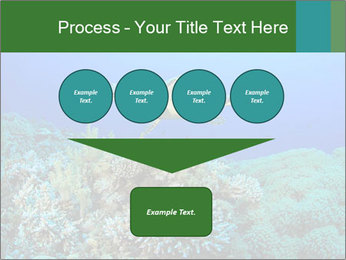 Wild Turtle PowerPoint Template - Slide 93