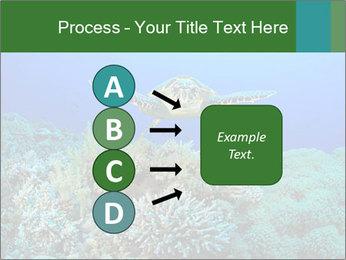 Wild Turtle PowerPoint Templates - Slide 94