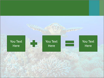 Wild Turtle PowerPoint Template - Slide 95
