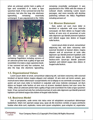 0000089260 Word Template - Page 4