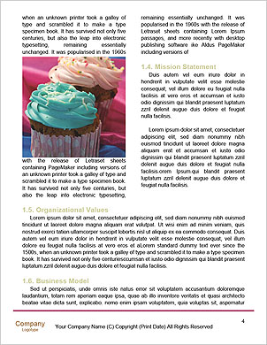 0000089266 Word Template - Page 4