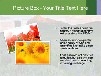 Beautiful Washington Gulch PowerPoint Templates - Slide 20