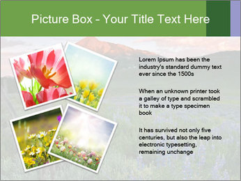 Beautiful Washington Gulch PowerPoint Templates - Slide 23