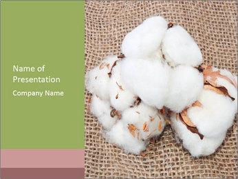 Organic Cotton PowerPoint Template