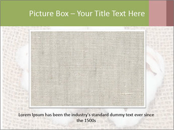 Organic Cotton PowerPoint Templates - Slide 15