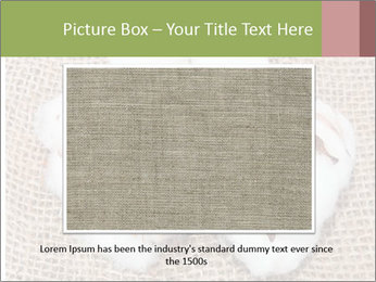 Organic Cotton PowerPoint Templates - Slide 16