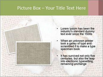 Organic Cotton PowerPoint Templates - Slide 20