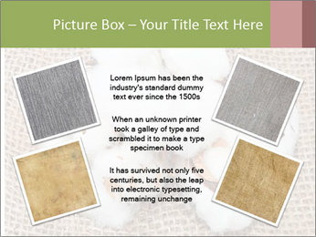 Organic Cotton PowerPoint Templates - Slide 24