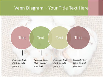 Organic Cotton PowerPoint Templates - Slide 32