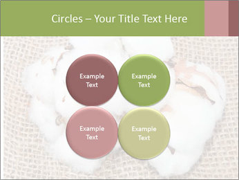 Organic Cotton PowerPoint Templates - Slide 38
