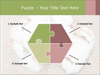 Organic Cotton PowerPoint Templates - Slide 40