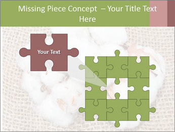 Organic Cotton PowerPoint Templates - Slide 45