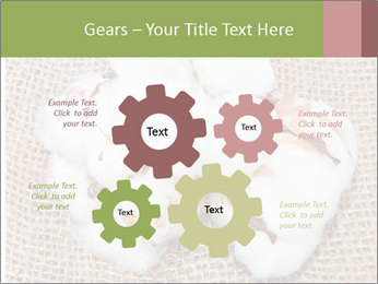 Organic Cotton PowerPoint Templates - Slide 47