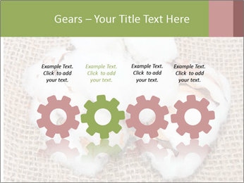 Organic Cotton PowerPoint Templates - Slide 48