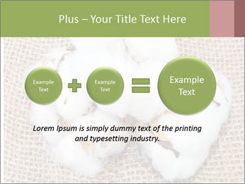 Organic Cotton PowerPoint Templates - Slide 75