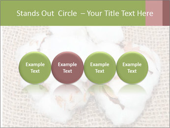 Organic Cotton PowerPoint Templates - Slide 76