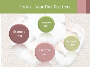 Organic Cotton PowerPoint Templates - Slide 77
