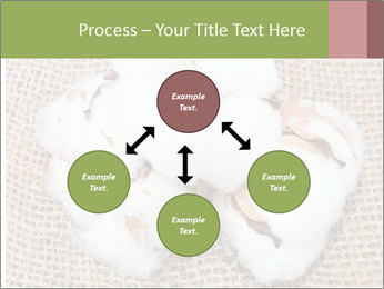 Organic Cotton PowerPoint Templates - Slide 91