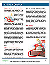 0000089277 Word Template - Page 3