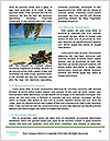 0000089281 Word Templates - Page 4