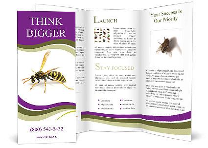 0000089283 Brochure Templates