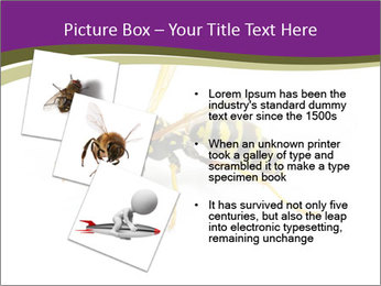 Wild Bee PowerPoint Template - Slide 17