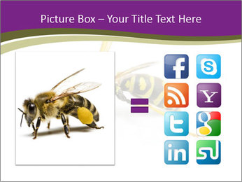 Wild Bee PowerPoint Template - Slide 21