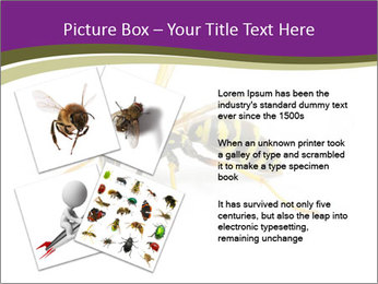 Wild Bee PowerPoint Template - Slide 23