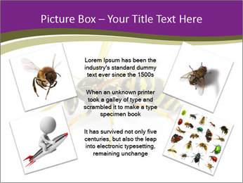 Wild Bee PowerPoint Template - Slide 24