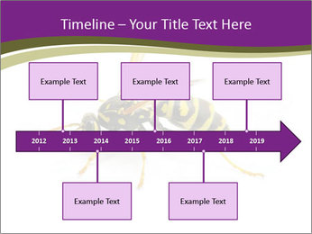 Wild Bee PowerPoint Template - Slide 28