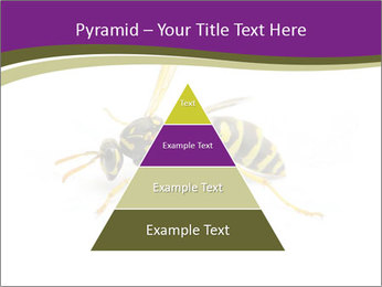 Wild Bee PowerPoint Template - Slide 30