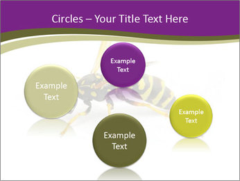 Wild Bee PowerPoint Template - Slide 77