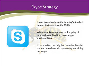 Wild Bee PowerPoint Template - Slide 8