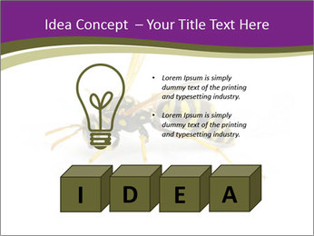 Wild Bee PowerPoint Template - Slide 80