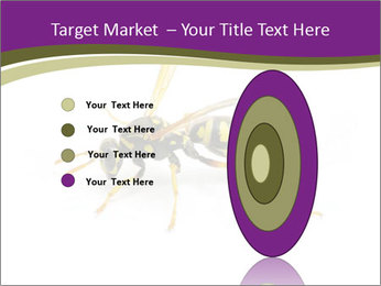 Wild Bee PowerPoint Template - Slide 84