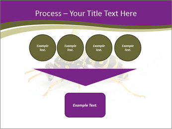 Wild Bee PowerPoint Template - Slide 93