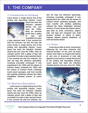 0000089285 Word Template - Page 3