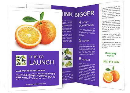 0000089287 Brochure Template